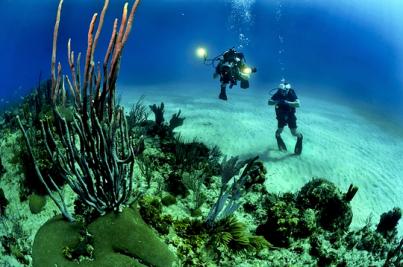 Unterwasseraufnahme